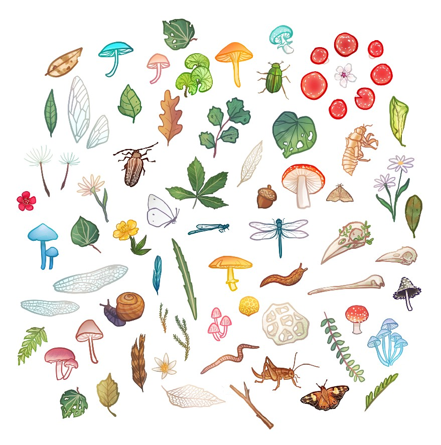 Tiny Forest Floor Stickers